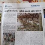26 Ottobre - Ingenti danni subiti dagli agricoltori